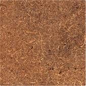 board cocodust
